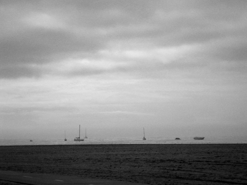 gray bw sailboats