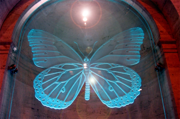 Blue Glass Butterflyjpg