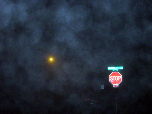 freaky fog shot 003 small