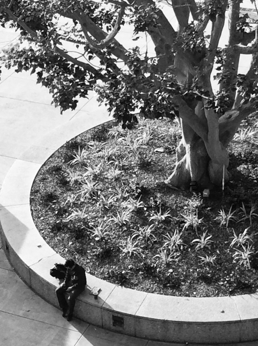 """""""Afternoon Composition #4: Man under a Tree in Black and White"""""""