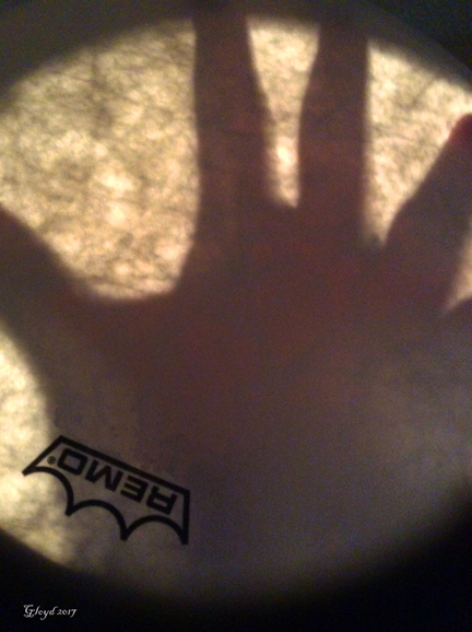 Shadow Hand through Drum